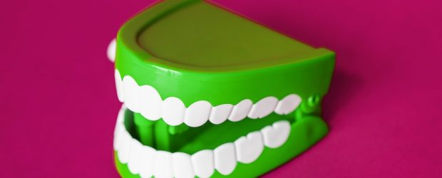 What You Need to Know About Finding the Top Dental Professional in Rosebud