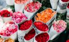 Everything you need to know on rose colors and arrangement